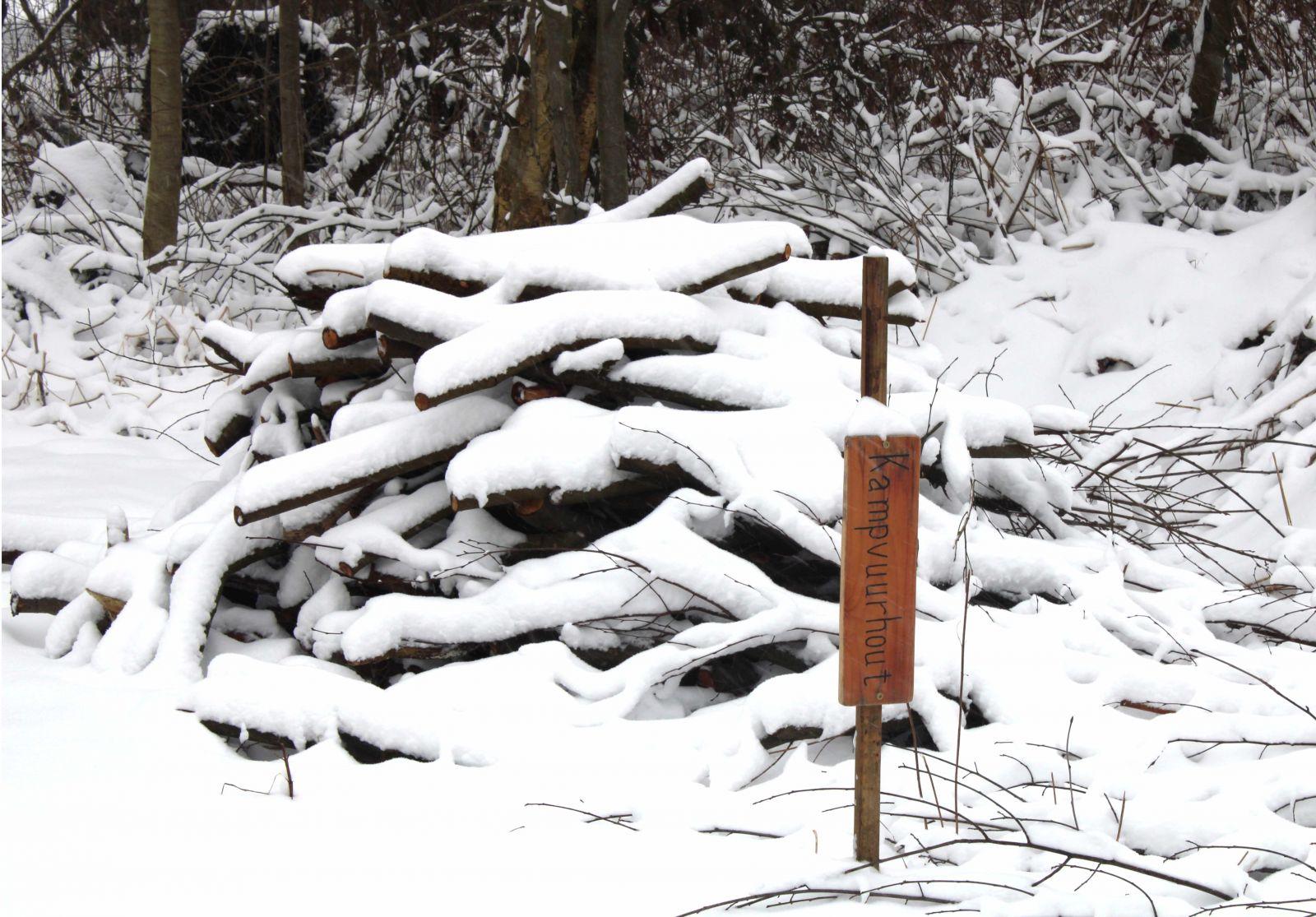 Kampvuurhout